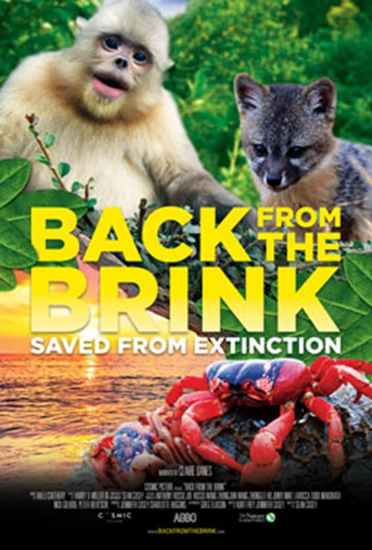 Back from the Brink 3D
