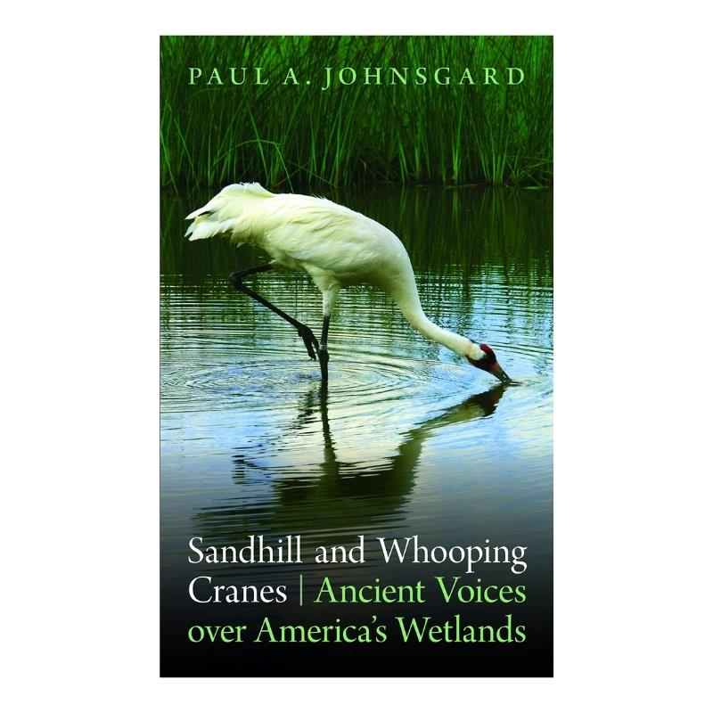 SANDHILL & WHOOPING CRANES ANCIENT VOICES