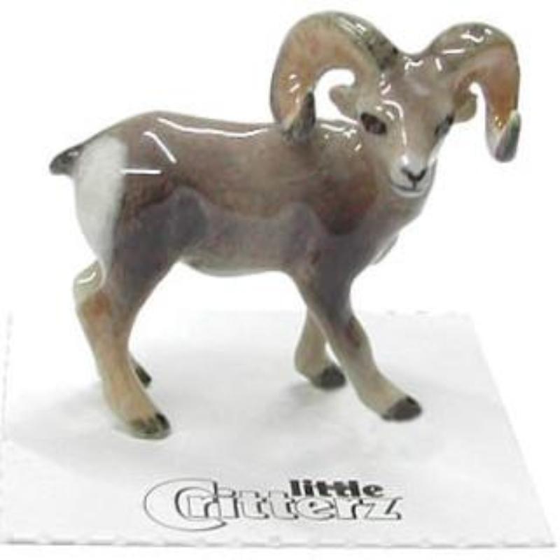 CLASH BIGHORN SHEEP,LC148