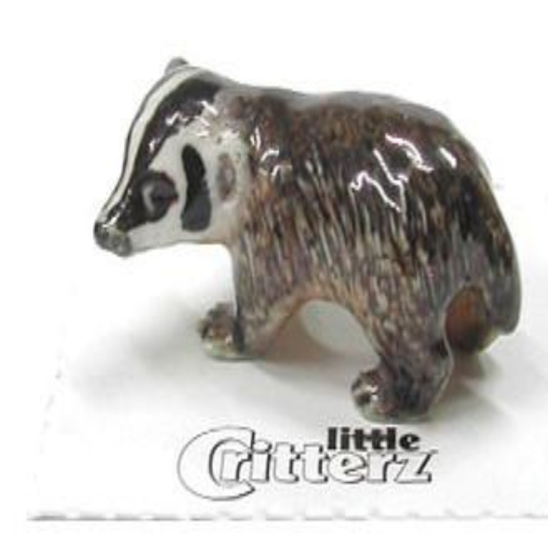 NOCTURNAL AMERICAN BADGER,LC144