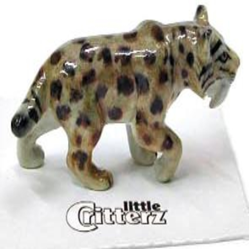 CATSBY SABER TOOTH TIGER,LC504