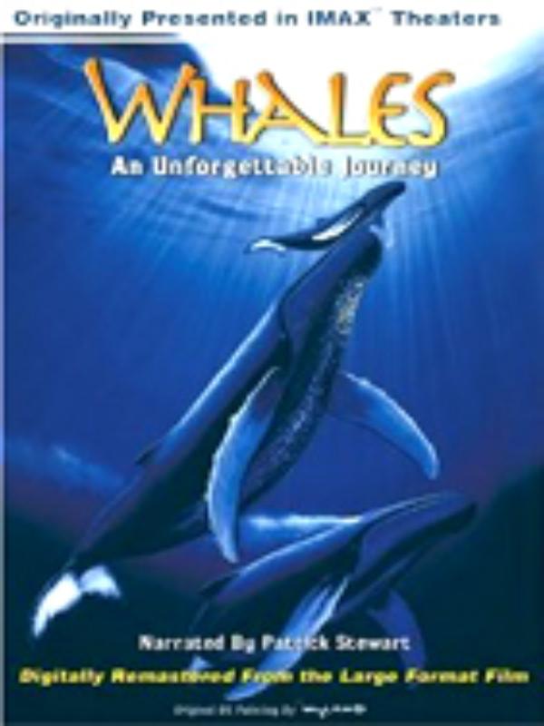 WHALES DVD