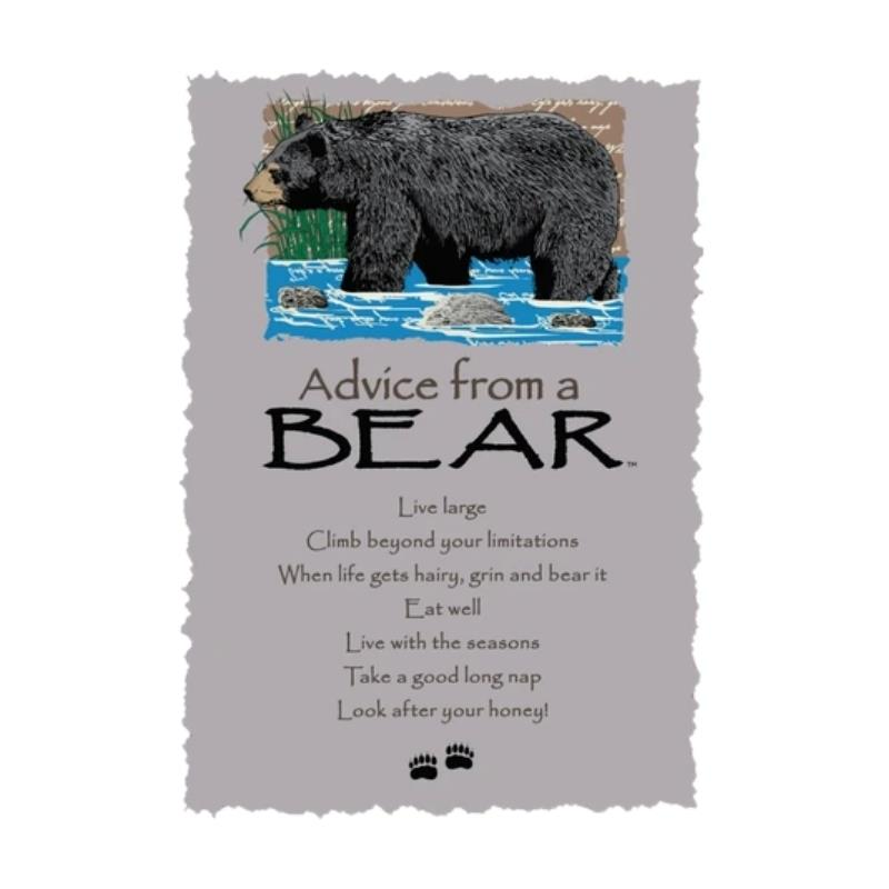 ADVICE BEAR POSTCARD,PCADVBEAR12