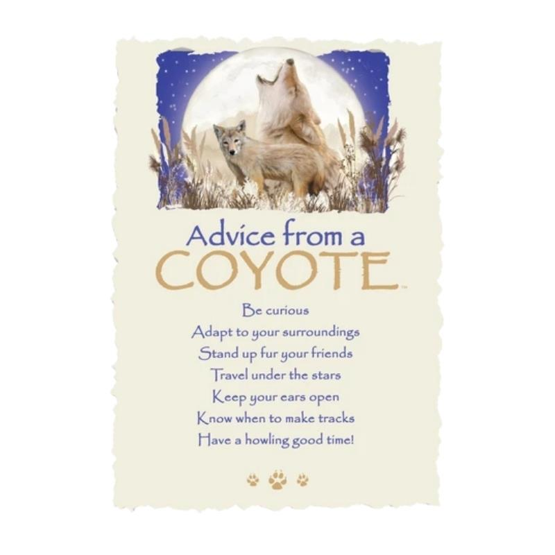 ADVICE COYOTE POSTCARD,PCADVCOYT12