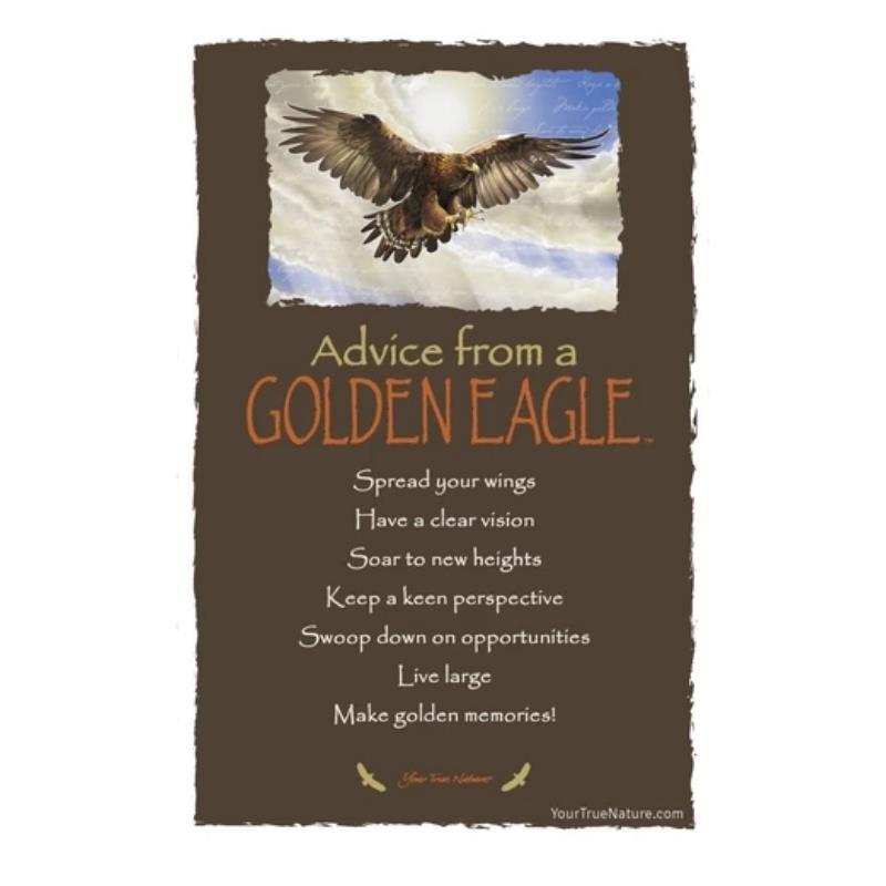 ADVICE EAGLE POSTCARD,PCADVEAGL12