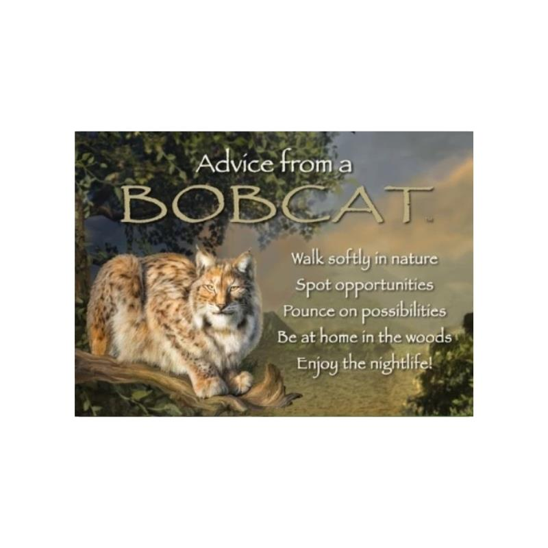 ADVICE BOBCAT MAGNET,MGADVBCAT6