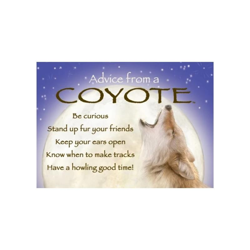 ADVICE COYOTE MAGNET,MGADVCOYT6