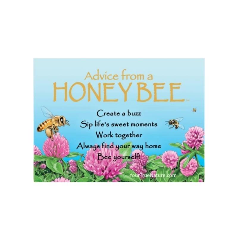 ADVICE HONEY BEE MAGNET,MGADVBEE6
