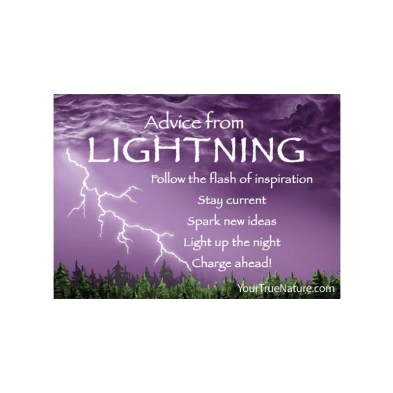 ADVICE LIGHTNING MAGNET,MGADVLIGHT6